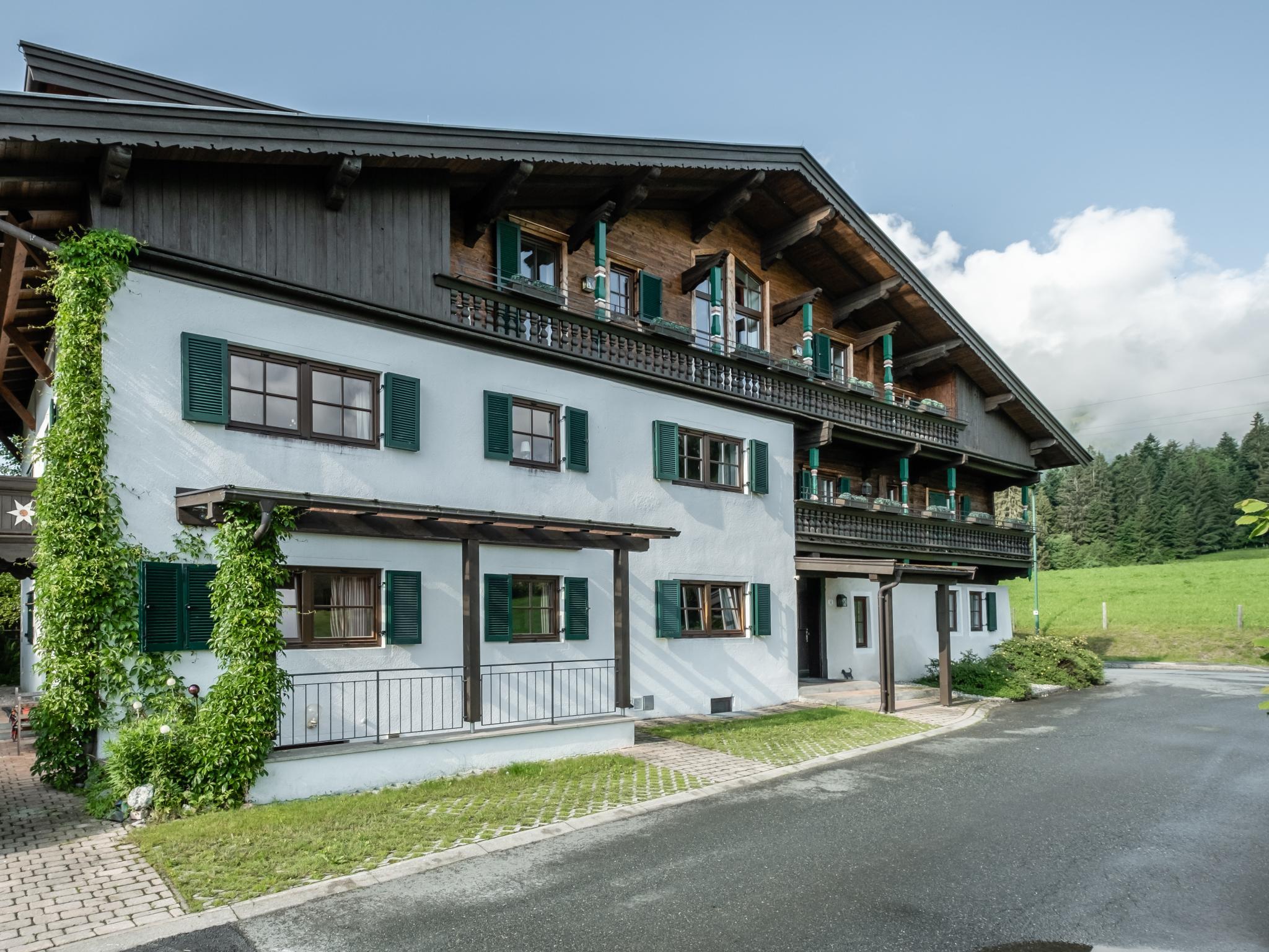 Blick am Kaiser Tirol